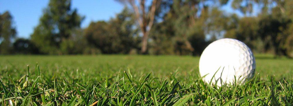 golf-trimmed